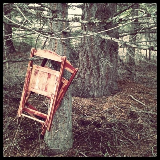 circus chairs in the fir tree