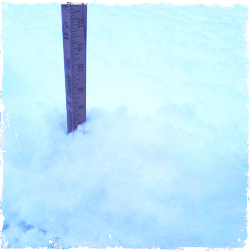 Five inches overnight.