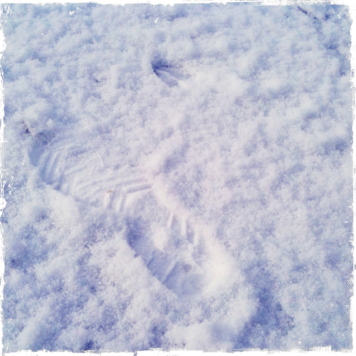 prints in the snow of a girl and a deer running